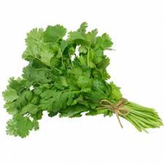 CILANTRO BUNCH PER COUNT