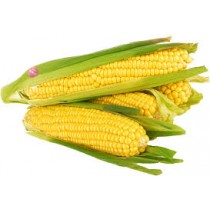 CORN FRESH PER COUNT